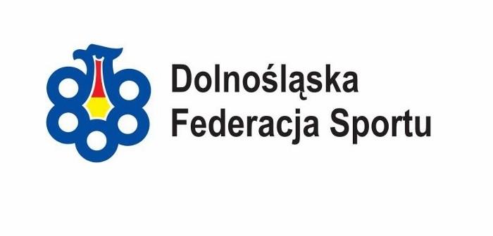 logo-dfs (700x382)